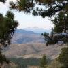APL #134 – Zen View
